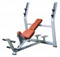 Elite Gym S-line nw 204 - Ferde pad